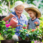 Ways to Keep Your Garden Healthy - not everyone knows